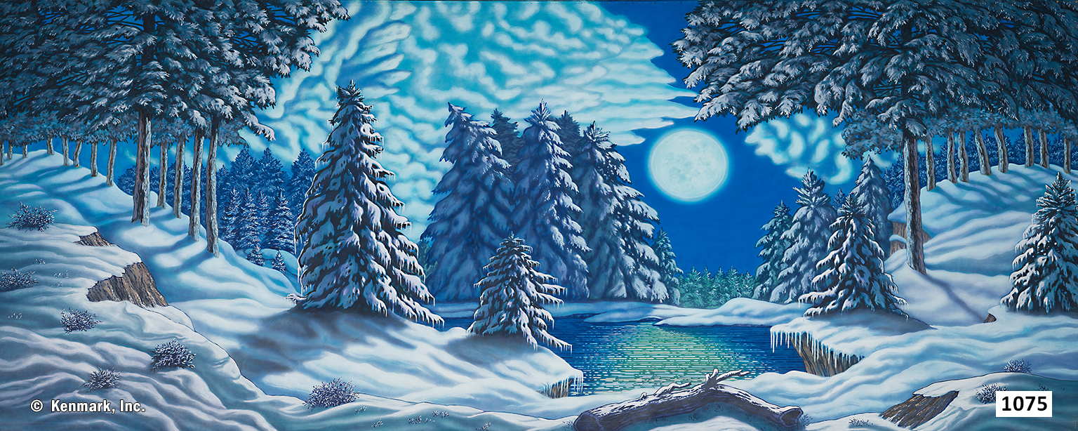 D1075 Snow Forest with Moon 20' x 50'
