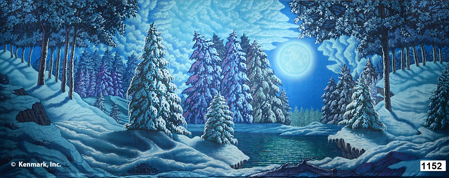 2078 Snow Forest w/Moon