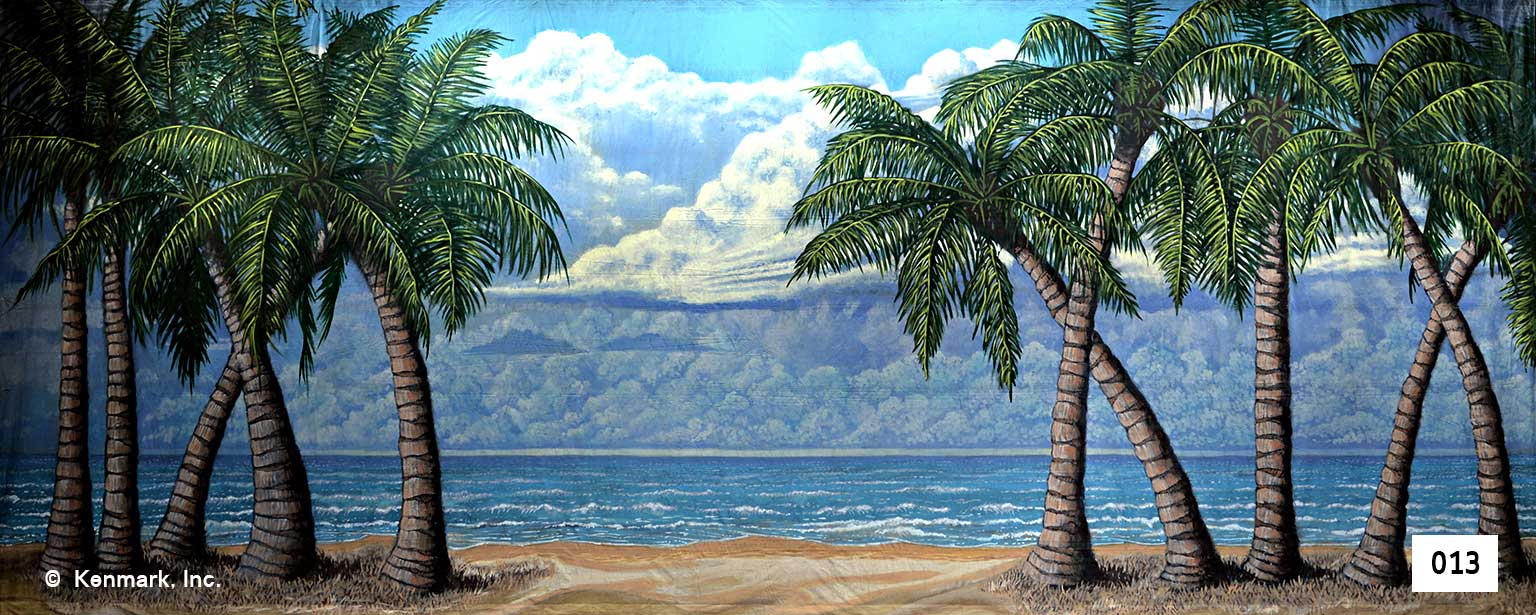 65 Beach Scene and Palm Trees