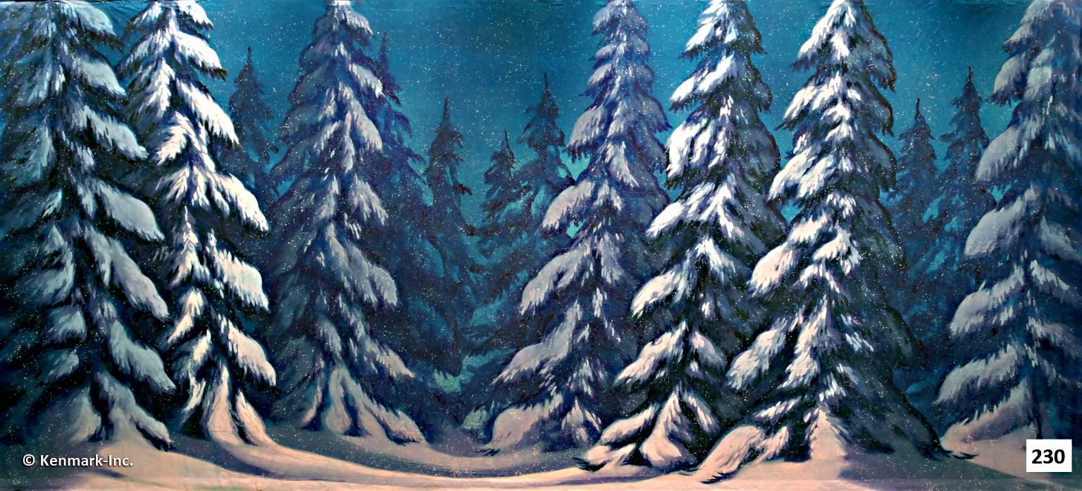 263 Snow Forest